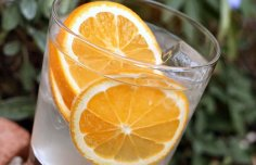 Portuguese Port and Tonic Recipe